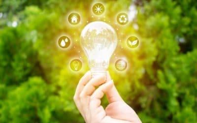 Innovar en los Ayuntamientos: de la opción a la necesidad